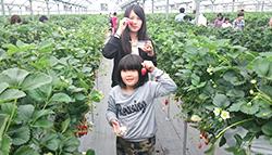 cnt_photo04