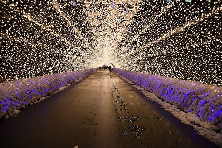 全国に知られている「なばなの里」(三重県桑名市)